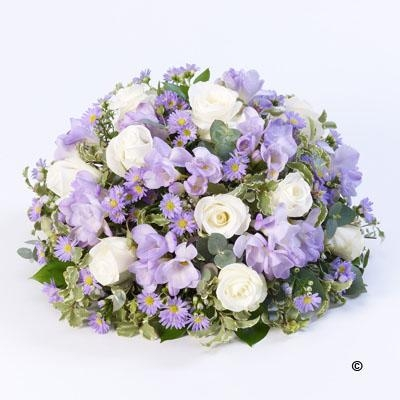 Posy  Lilac and White